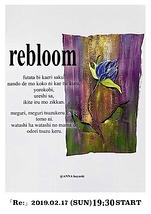 rebloom