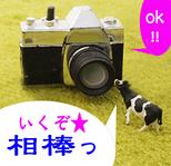 PHOTO★石澤
