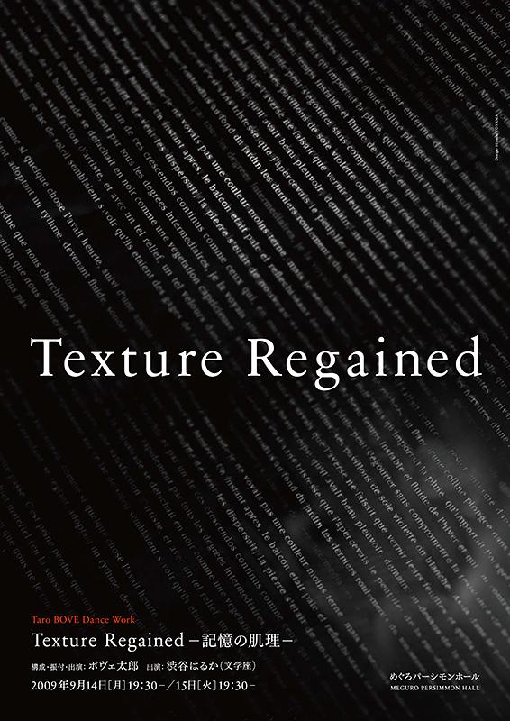Texture Regained -記憶の肌理-