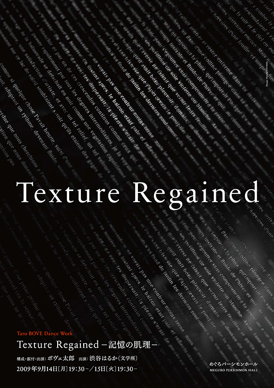 Texture Regained -記憶の肌理-
