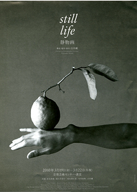 静物画 - still life