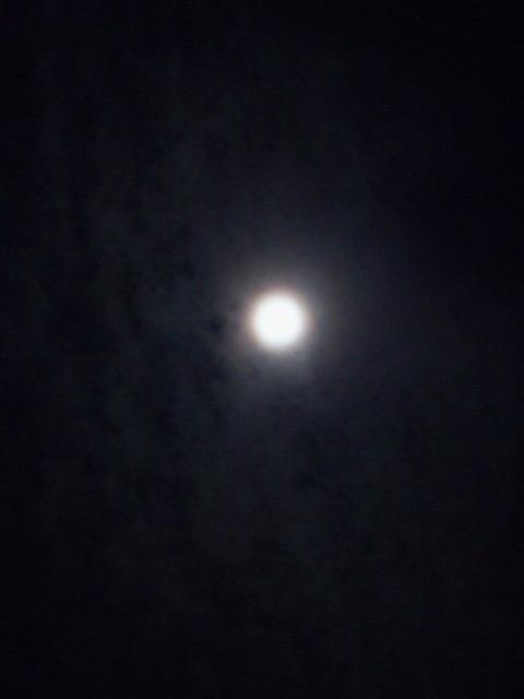 雨より冷たく、月より遠く