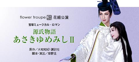 源氏物語 あさきゆめみしII