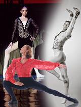バレエの神髄