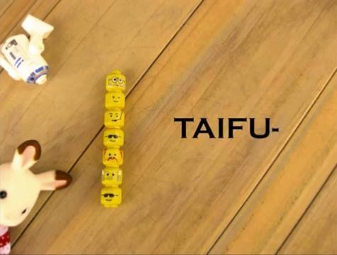 TAIFU-