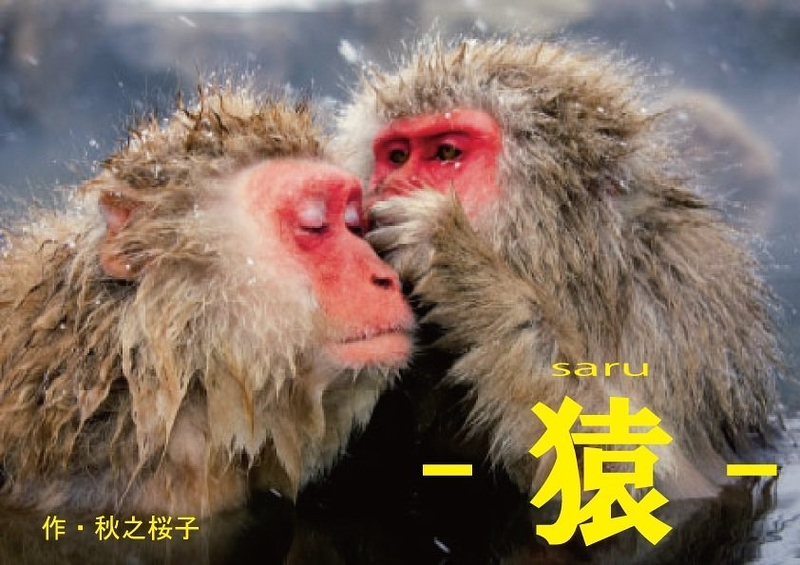 -猿-saru