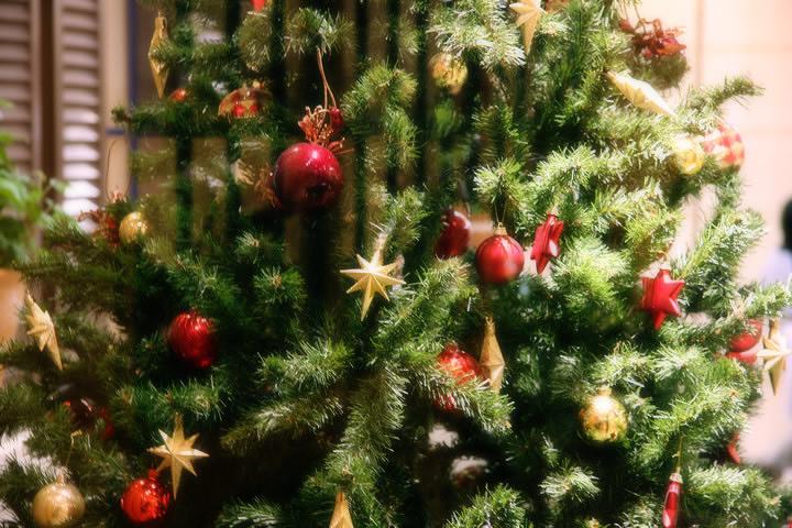 赤ずきんちゃんの森の狼たちのクリスマス(あるくとメンバー及び在仙俳優有志)
