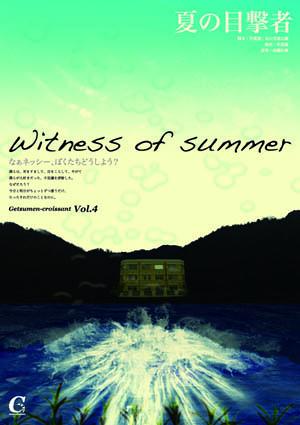 夏の目撃者