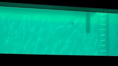 アジアシリーズ vol.1 韓国特集 多元(ダウォン)芸術『From the Sea』