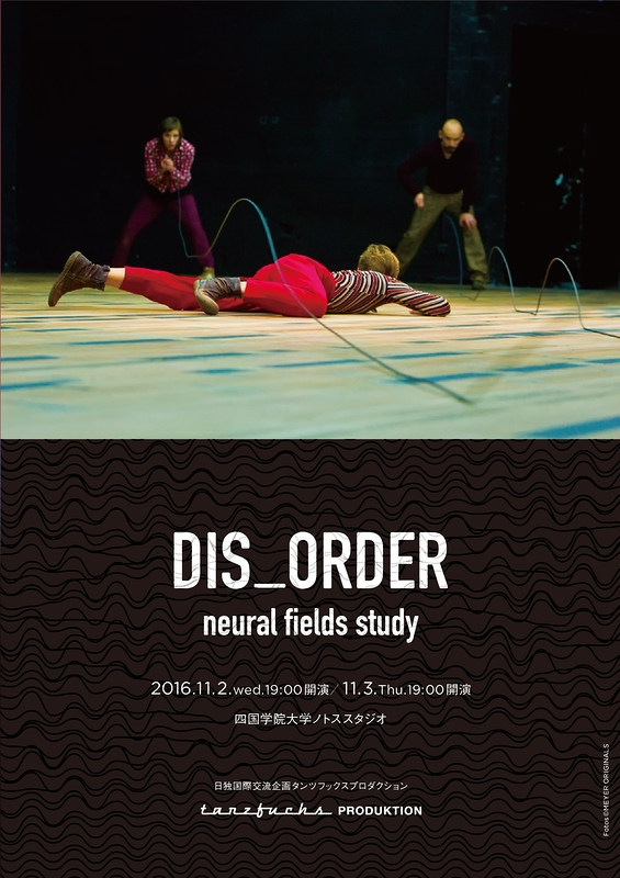 DIS_ORDER neural fields study