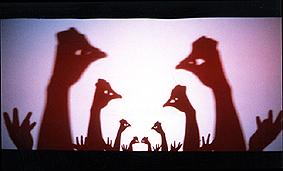 La Pupa Teatro 12