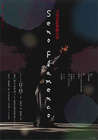 Seno Flamenco
