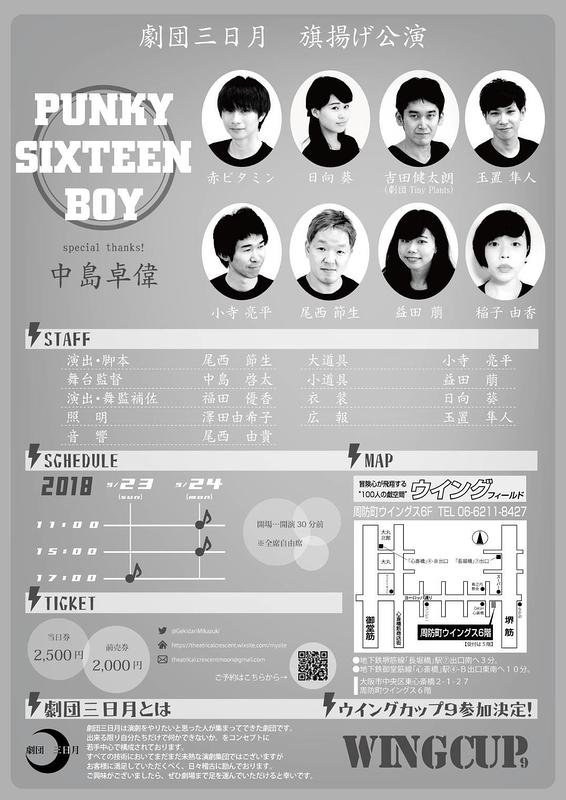 PUNKY SIXTEEN BOY