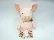 pinky pig night