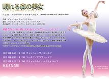 マリインスキー・バレエ 2009年公演「眠れる森の美女」