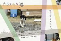 カラフルな猫
