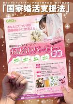 国家婚活支援法