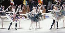夏休みスペシャル 森下洋子のバレエ&トーク