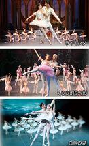 レニングラード国立バレエ―ミハイロフスキー劇場―『新春スペシャル・ガラ』