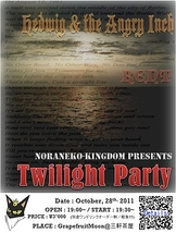 Twilight Party