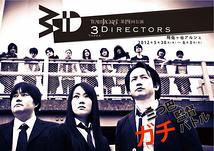 3Directors