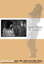 Scar Tissue(傷跡)