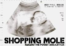 SHOPPING MOLE