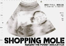 SHOPPING MOLE