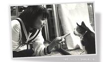 路地裏の優しい猫
