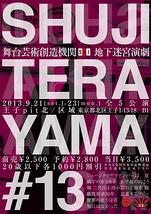 SHUJI TERAYAMA#13