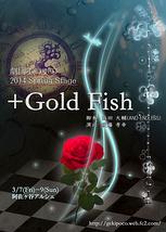 +Gold Fish