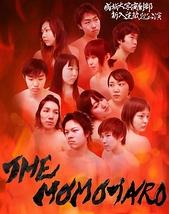THE MOMOTARO
