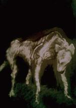 五輝様 Francis Bacon 老犬の唄