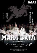 マハーバーラタ~ナラ王の冒険~