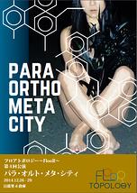 パラ・オルト・メタ・シティ