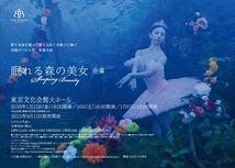 谷桃子バレエ団 新春公演 『眠れる森の美女』 全幕