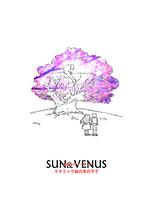 太陽とヴィーナス  ケチミャク桜の木の下で