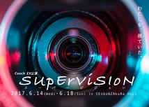 SUpErViSIoN (スーパービジョン)