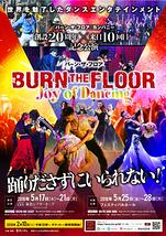 バーン・ザ・フロア Joy of Dancing