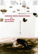 櫻井郁也ダンスソロ『白鳥』