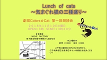 lunch of cats