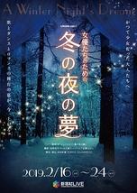 女優たちのための冬の夜の夢