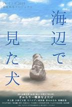 海辺で見た犬