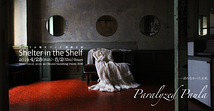 Shelter in the Shelf