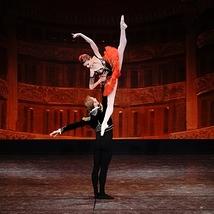 華麗なるクラシックバレエ・ハイライト