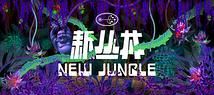 香料SPICE  新丛林 ニュー・ジャングル