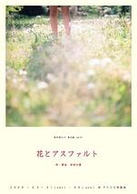 花とアスファルト