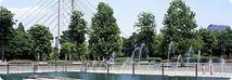 木場公園 多目的広場