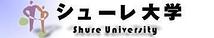 シューレ大学