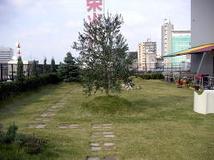 スカイステーション(屋上緑化展示場)